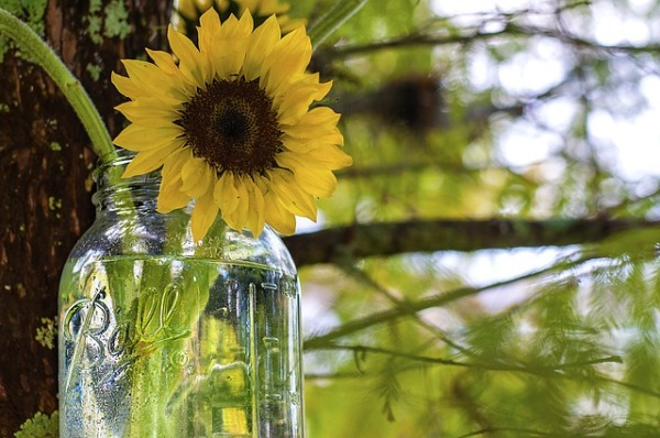 mason-jar-favors-wedding